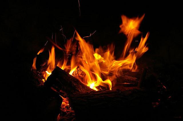 #1423 Fire