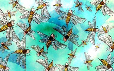 #463 Swarm Part One
